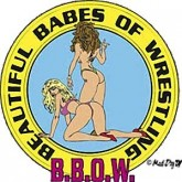 Beautiful Babes of Wrestling