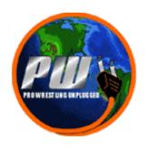 Pro Wrestling Unplugged