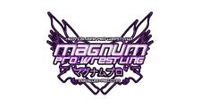 Magnum Pro Wrestling