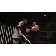 "BJW December 30, 2012 ""World Triangle Near Live"" - Tokyo, Japan (Download)"