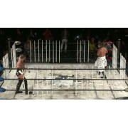 "BJW November 25, 2012 ""Death Market 12"" - Nagoya, Japan (Download)"