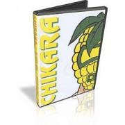 "Chikara DVD May 20, 2005 ""Anniversario Blue"" - Reading, PA"
