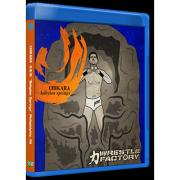"Chikara Blu-ray/DVD November 8, 2015 ""Babylon Springs"" - Philadelphia, PA"