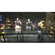 "CZW August 14, 2010 ""Tangled Web 3"" - Philadelphia, PA (Download)"