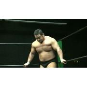 "CZW April 10, 2011 ""International Incident"""" -– Union City, NJ (Download)"