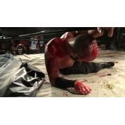 """CZW November 7, 2015 """"Cerebral"""" - Dayton, OH (Download)"""