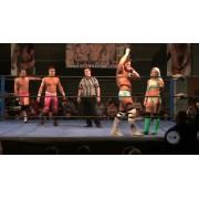 "DreamWave Wrestling August 1, 2015 ""Adversity"" - LaSalle, IL (Download)"