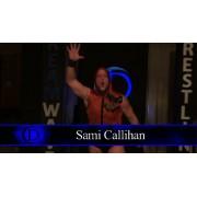 "DreamWave Wrestling February 6, 2016 ""Immortality 2016"" - LaSalle, IL (Download)"