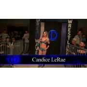 """DreamWave Wrestling April 9, 2016 """"Anniversary VII"""" - LaSalle, IL (Download)"""
