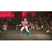 "F1rst Wrestling January 9, 2015 ""Wrestlepalooza V"" - Minneapolis, MN (Download)"