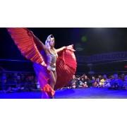 "F1RST Wrestling January 8, 2016 ""WrestlePalooza VII"" - Minneapolis, MN (Download)"