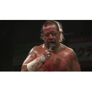 """FREEDOMS August 21, 2013 """"Pain Limit 2013 - Stage 1"""" - Tokyo, Japan (Download)"""