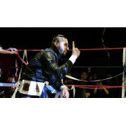 "Freelance Wrestling December 9, 2016 ""Triple Threat Level Midnight"" - Chicago, IL (Download)"