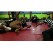 """IWA Mid-South January 29, 2015 """"Fatality"""" - Clarksville, IN (Download)"""