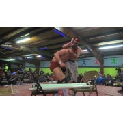 """IWA Mid-South March 15, 2015 """"Prince of the Death Matches"""" - Clarksville, IN (Download)"""