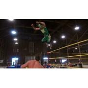"Wrestling Is Heart April 20, 2013 ""Pulse"" - Lafayette, IN (Download)"