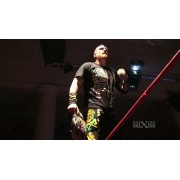 "wXw April 13, 2013 ""Live in Chemnitz""- Chemnitz, Germany (Download)"