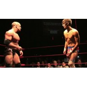"wXw March 1, 2013 ""16 Carat Gold - Night 1"" - Oberhausen, Germany (Download)"