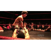 "wXw March 2, 2013 ""16 Carat Gold - Night 2"" - Oberhausen, Germany (Download)"