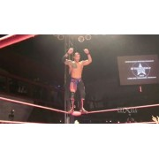 "wXw March 3, 2013 ""16 Carat Gold - Night 3"" - Oberhausen, Germany (Download)"