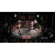 "wXw November 23, 2013 ""13th Anniversary Tour: Fulda"" - Fulda, Germany (Download)"